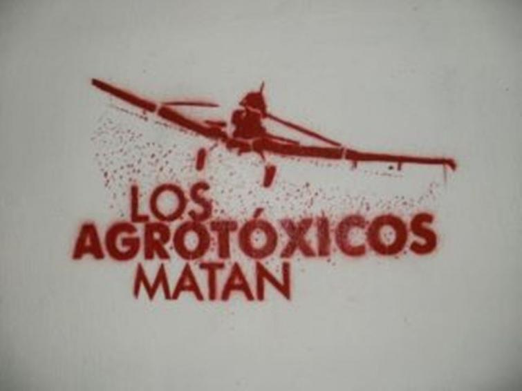 Por orden de una jueza civil y comercial de Rosario, comenzaron a implementarse los controles sobre frutas y verduras que se venden en los mercados mayoristas de Rosario y Santa Fe
