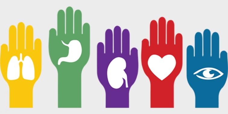 Se reglamentó la ley Justina y cambió el régimen de donación de órganos
