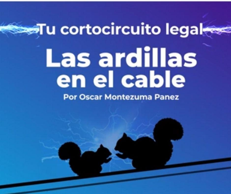 """""""Las ardillas en el cable"""", un podcast sobre innovación legal"""