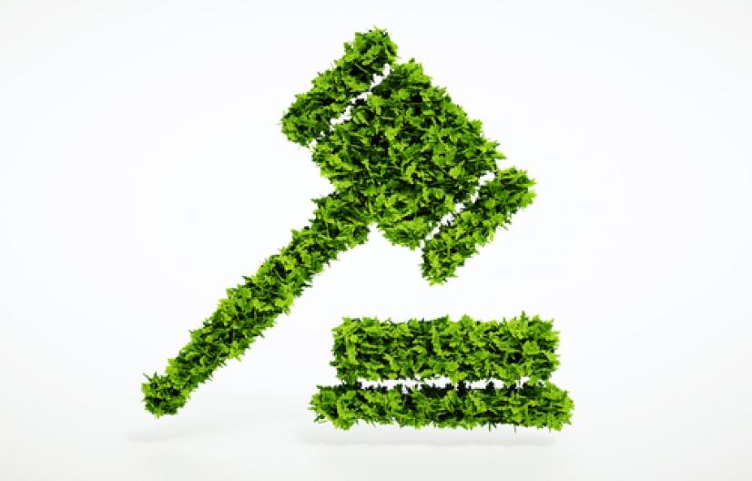 Pericias ambientales en el marco de Ciencia y Justicia