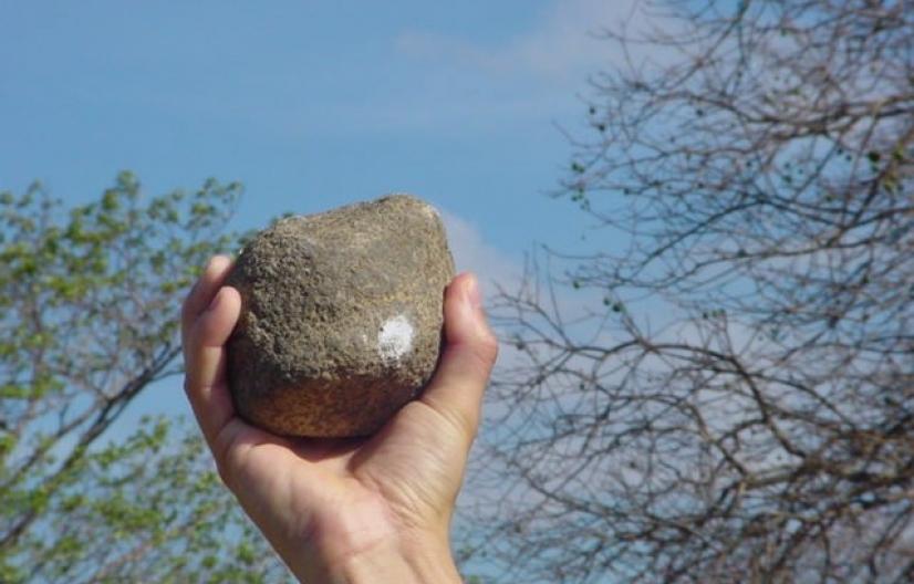 Santa Fe. Un joven tiró una piedra a un móvil policial, lo daño y ahora deberá pagar dos mil pesos