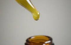 Amparo. SanCor Salud deberá reconocer la cobertura integral del aceite de Charlotte (Aceite de Cannabis) Descargar