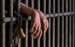 Condenaron a cuatro hombres en la primera causa compleja por narcotráfico bajo el nuevo Código Procesal Penal Federal