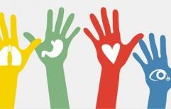 #Fallos Donación de órganos: Se autoriza el trasplante de parte del hígado del donante a su cuñado, ambos guatemaltecos, ya que se encuentran presentes las exigencias para que sea procedente la ablación entre vivos 'no relacionados'
