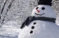 Feria judicial de invierno, ya está la fecha.