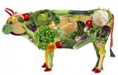 Hasta donde llega el derecho del otro: Vegana denunció a sus vecinos por el olor a asado