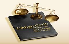 Las claves del nuevo Código: adopción, reproducción asistida, matrimonio y defensa del consumidor