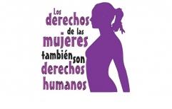 Los derechos de las Mujeres son Derechos Humanos. 1er  Informe del Registro único de situaciones de violencias hacia las mujeres.