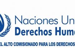 La ONU emitió un informe sobre la situación de los derechos humanos en la Argentina. Ver informe completo