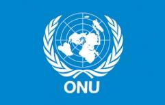 """ONU: """"..solicita al Gobierno de la República Argentina liberar de inmediato a la señora Milagros Sala.."""""""