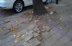 Rechazan responsabilidad de la Ciudad de Buenos Aires por las lesiones que habría sufrido una mujer al tropezarse en la vía pública