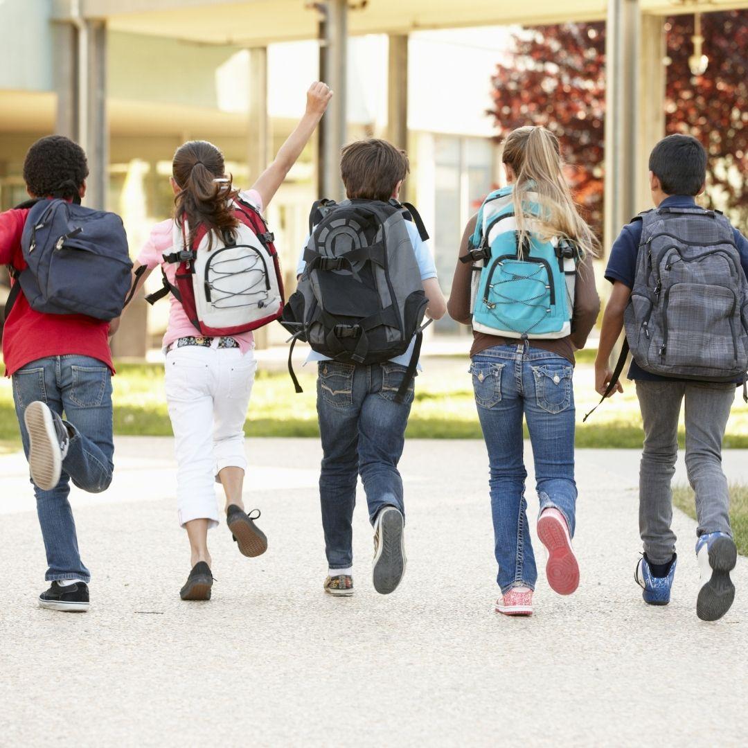 Recurso de amparo para recuperar la presencialidad escolar