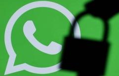 WhatsApp: un fallo de seguridad filtró números de teléfono en el buscador de Google